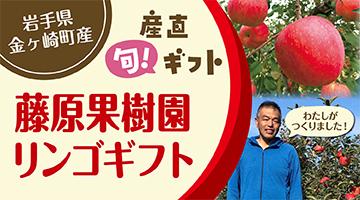 藤原果樹園りんご特集