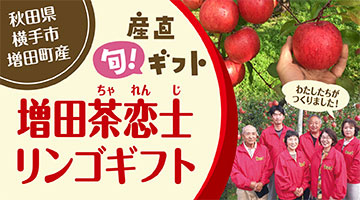 増田茶恋士リンゴギフト